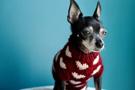 Jellybean's Sweetheart Sweater